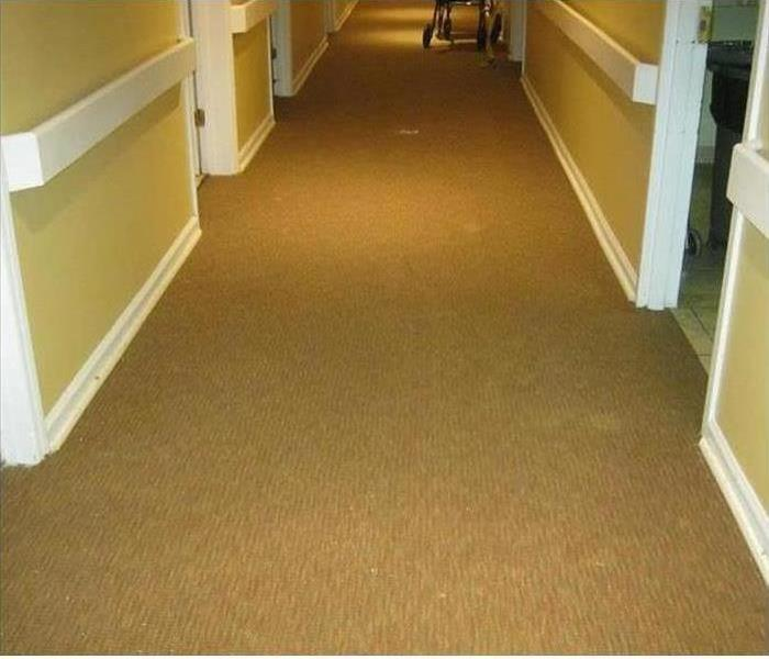 Soaked Carpet In Commercial Facility After