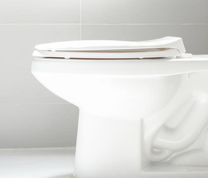 Water Damage When a Toilet Overflow Damages 2 Floors