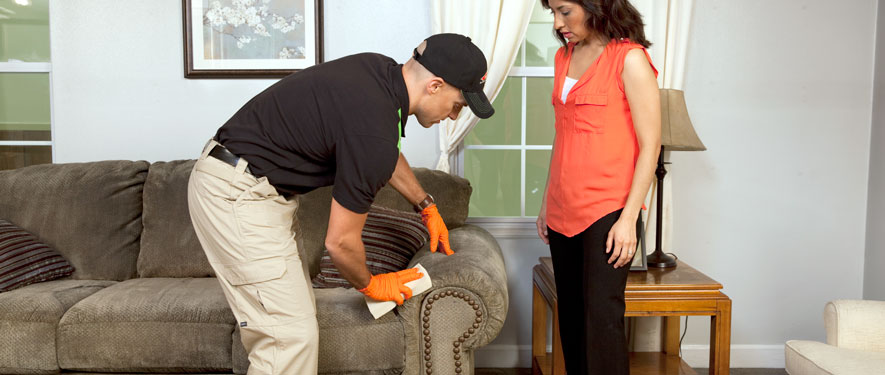 Maryland Heights, MO carpet upholstery cleaning